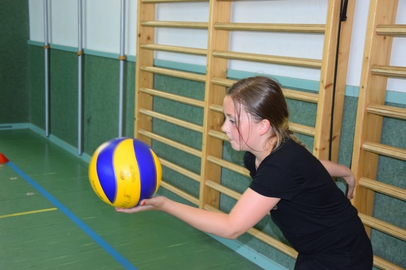 Volleyballturnier 011
