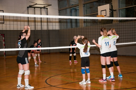 Volleyball 06